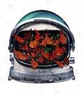 استیکر LooLoo طرح پروانههای فضانورد