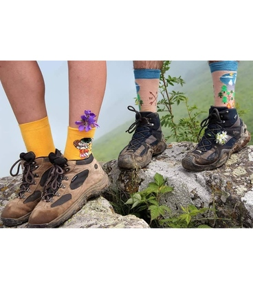 جوراب Alter Socks طرح بوسه گوستاو کلیمت