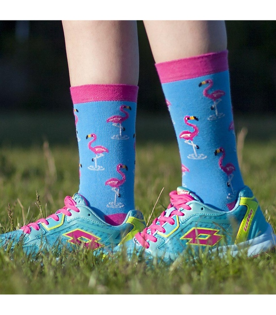 جوراب Alter Socks طرح فلامینگو