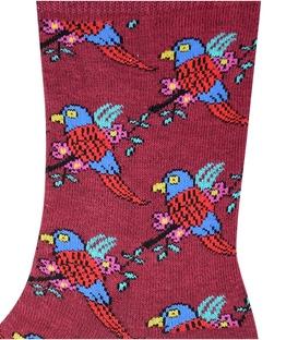 جوراب ساق دار Chetic طرح طوطی